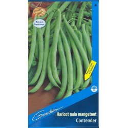 Haricot Verts Contender 1kg