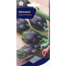 Artichaud violet de provence