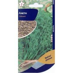 Aneth odorante BIO