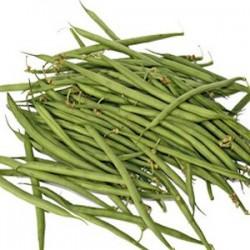 Haricots verts à Rame...